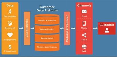 Data Customer Mapp Stack Marketing Unified Optimize