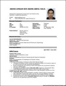 download professional resume format pdf