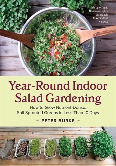 25 Best Ideas About Urban Gardening On Pinterest