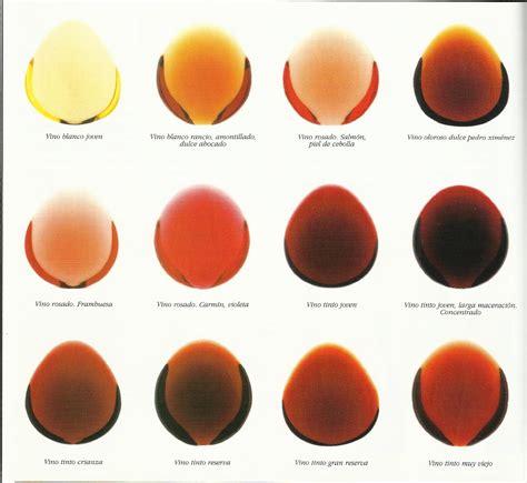 vino color restaurante carmelaconsejos para elegir vino 187 restaurante