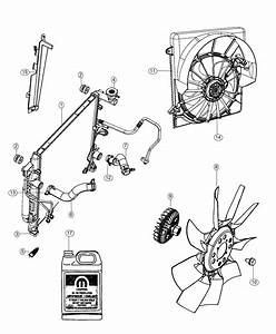 2012 Jeep Liberty Clamp  Radiator Hose  Engine Side