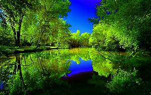 Beautiful Scenery Of A River HD Wallpaper