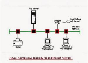 A Simple Bus Topology For An Ethernet Network