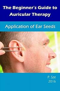 Dragon Acupuncture Vaccaria Ear Seeds 600 Counts Refill