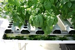 types  hydroponic systems