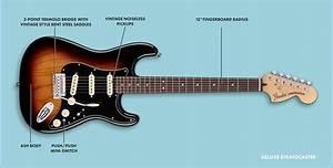 Fender Deluxe Players Strat Wiring Diagram