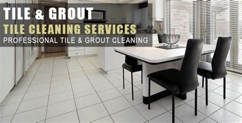 Commercial Carpet Cleaning Mansfield Tx Bench Stools And Chairs Entryway Small Low Tv How Much Should I Press For My Weight Hammer Strength Price Shoulder Hurts When Garden Seat Pads