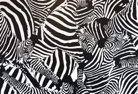 Papier Peint Zebre Noir Et Blanc by Indogate Com Lambris Salle De Bain Castorama