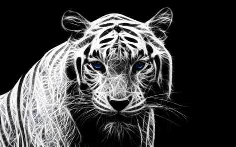 3d Wallpaper Hd Tiger by 3d White Tiger Wallpaper 2019 Live Wallpaper Hd