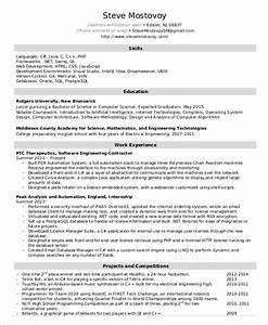 software engineer resume example 10 free word pdf With software resume template