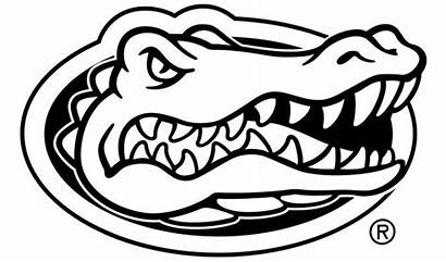 Florida Gators Gator Silhouette Yeti Ramblers Official