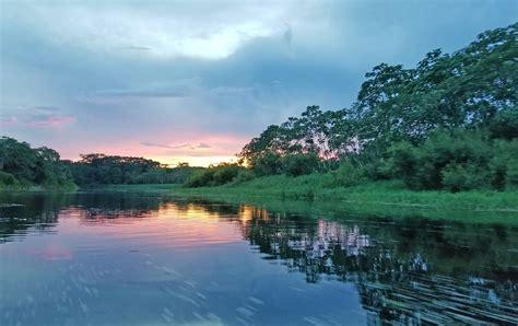 delfin amazon cruises adventures   amazon river
