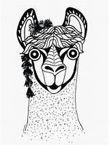 Coloring Llamas Face Llama Unicorn sketch template