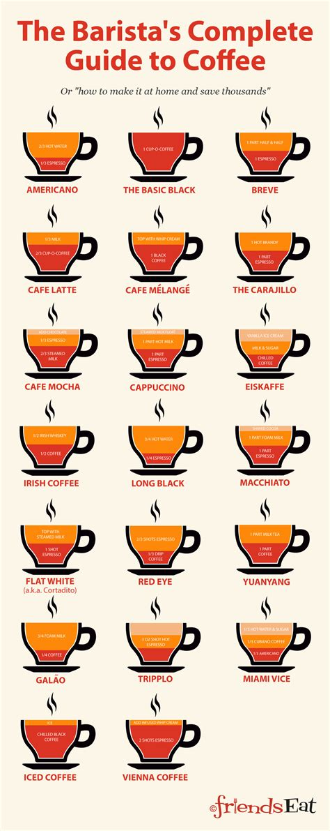 How to Make Coffee Like A Barista (Food Infographics)
