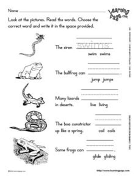reptiles and hibians verb usage 2nd 3rd grade