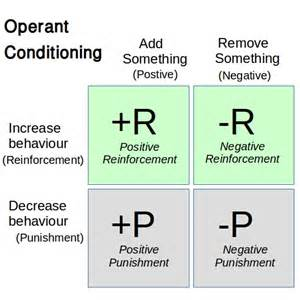 Negative Reinforcement Operant Conditioning Examples