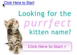 names for boy cats kitty names