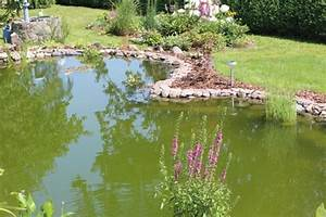 Grünes Wasser Im Gartenteich Hausmittel : gr nes wasser im gartenteich mein sch ner garten forum ~ Watch28wear.com Haus und Dekorationen