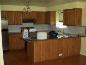 ideas for painting kitchen cabinets painting kitchen cabinets color ideas home interior design