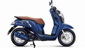 Honda Scoopy Images