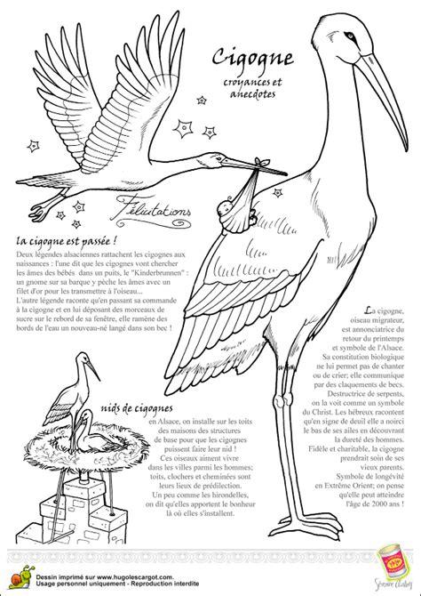 jeu de cuisine gateau coloriage oiseau legende cigogne sur hugolescargot com