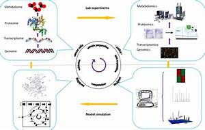 A schematic model of system biology for biomarker ...