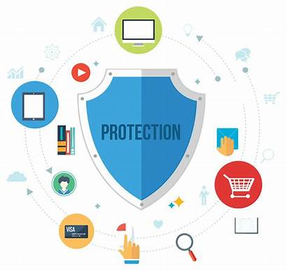 Security Importance Business Protection Audit Website Bandicoot