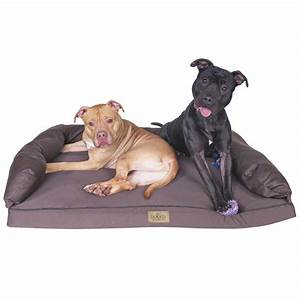 buy best promotion memory foam dog bed removable cover pet With best place to buy dog beds