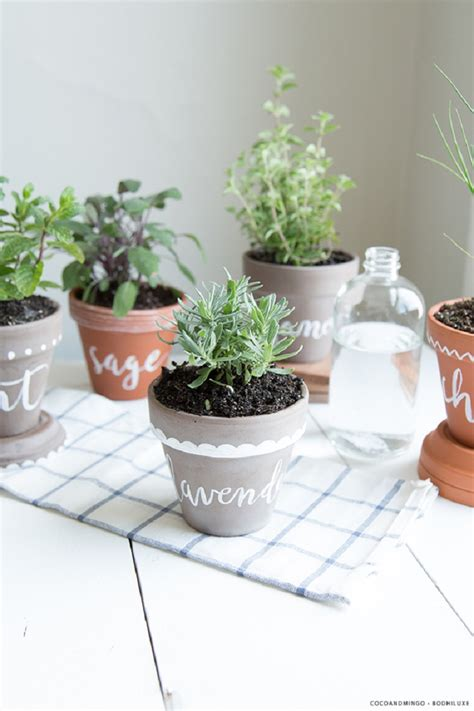 Indoor Herb Garden Pot Planters Ideas by Inspiring Low Budget Unique Ideas For Herb Containers