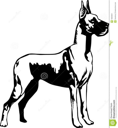 Use with your cricut explore, silhouette or other cutting machines. Great Dane Stock Image - Image: 18923841
