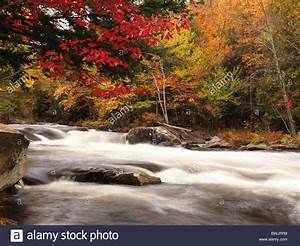 Beautiful fall nature scenery of Oxtongue river rapids ...