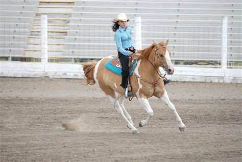 Paint Horse Registered Names