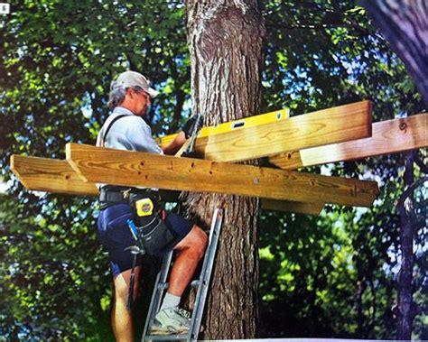 les 25 meilleures id 233 es de la cat 233 gorie cabanes dans les arbres sur forts construits