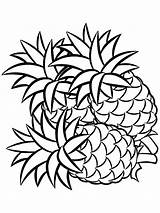 Pineapple Coloring Fruits Printable Recommended sketch template