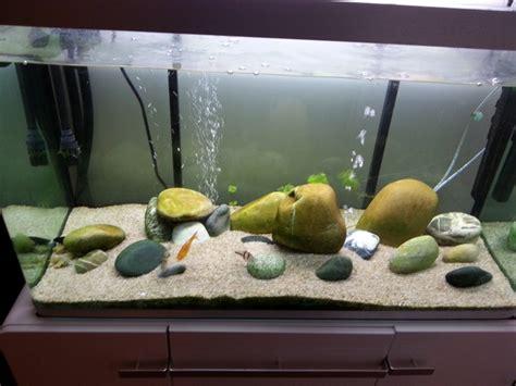 aquarium osaka 320 blanc r 233 cif a l ouest