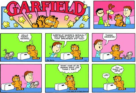 1000+ Images About Garfield On Pinterest