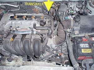Toyota Matrix Engine Diagram 2003 Toyota Matrix