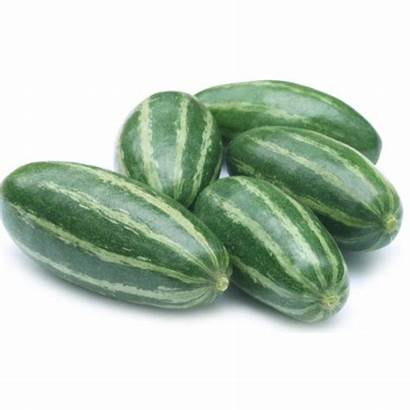 Vegetables Parwal Patal Fruits Gourd Pointed