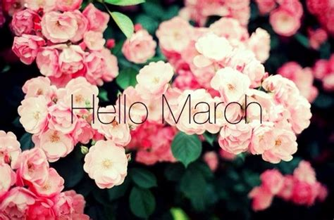 march images  quotes