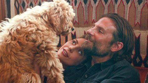 Bradley Cooper A Star Is Born, Casting His Own Dog Charlie Peoplecom