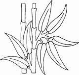 Bamboo Coloring Coloriage Plante Imprimer Dessin Plants Drawings Dessins Colorier sketch template