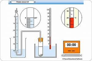 Decomposition Of Hydrogen Peroxide By Catalase Experiment