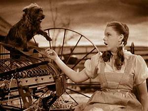 The Wizard of Oz - Movie Stills