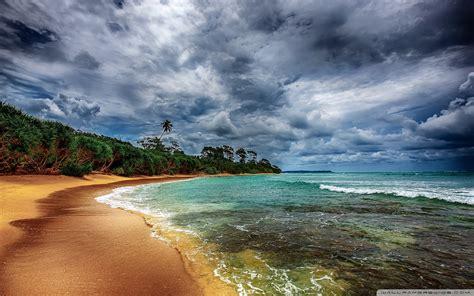 Tropical Coast With Beautiful Beach Wallpaper 2560x1600