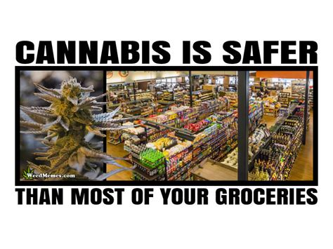 Legalize Weed Meme - cannabis is safer than most of your groceries legalize weed memes