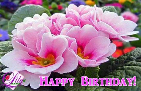 birthday  filled   flowers ecards greeting cards