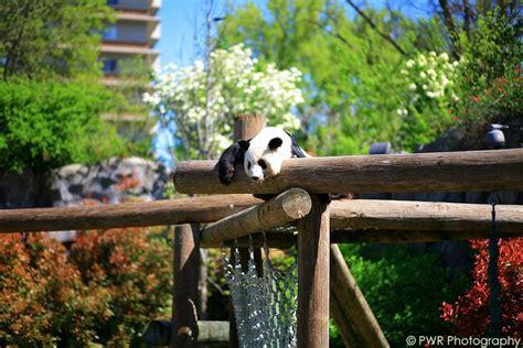 states united zoos ten zoo