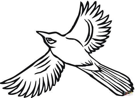 Dibujo De Arrendajo Volando Para Colorear Dibujos Para