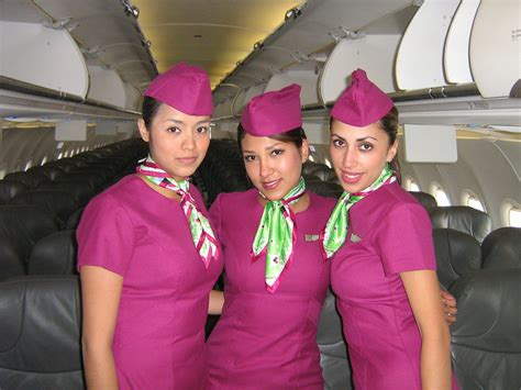 cabin attendants 1000 images about stewardesses heavenly on
