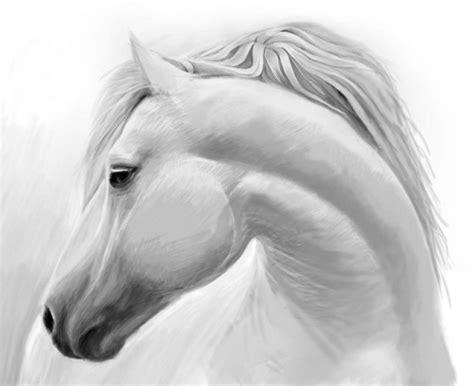 disegni a matita facili ma belli disegni di cavalli facili ws61 187 regardsdefemmes